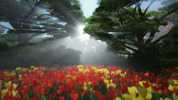 Magic forest with colorful tulips, sun shinning through trees Animation
