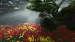 Magic forest with colorful tulips, sun shinning through trees, pan and tilt Animation