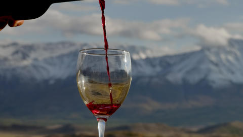 One Person Pouring Old Red Wine from a Bottle into a Glass in Slowmotion View 4k Live Action