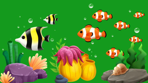 Swimming fishes and underwater plants with green screen background Animation