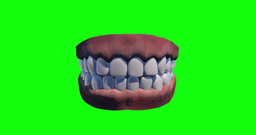 4 animations teeth green screen denture green screen dental green screen teeth human denture human Animation
