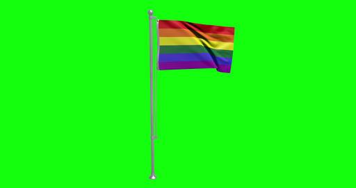 flag rainbow lgbtq green screen gay pride pole waving flag green screen lgbtq rainbow gay rainbow Animation