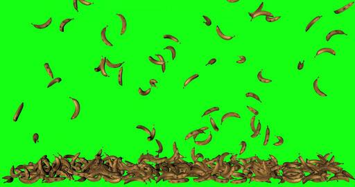 green screen fruit banana animation falling floor stacked 3d green screen animation banana fruit GIF