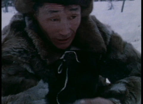 An old Eskimo ropes a reindeer Stock Video Footage