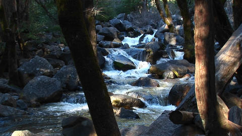 Water cascades over rocks in a mountain stream Footage