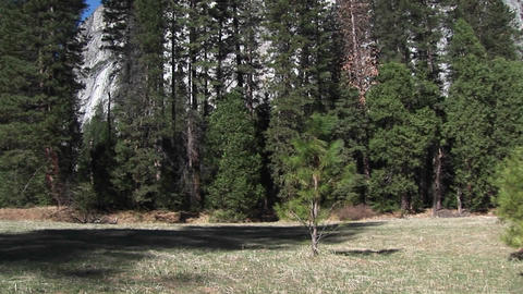 A panoramic view of woods, meadow and mountains on a... Stock Video Footage