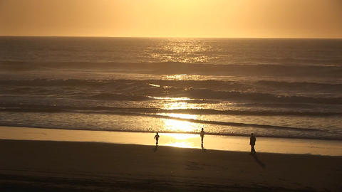 A man and two children play along the water's edge in the golden-hour Footage