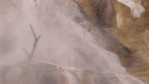 A Dead Tree Branch Mysteriously Rises Out Of Limestone Deposits Encased In A Misty Shroud Of Rising stock footage
