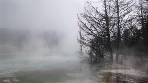 Medium-shot of steam rising from a thermal-pool in Yellowstone National Park, Wyoming Footage