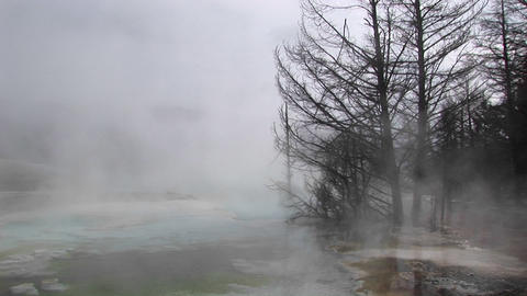 Medium-shot of steam rising from a thermal-pool in... Stock Video Footage