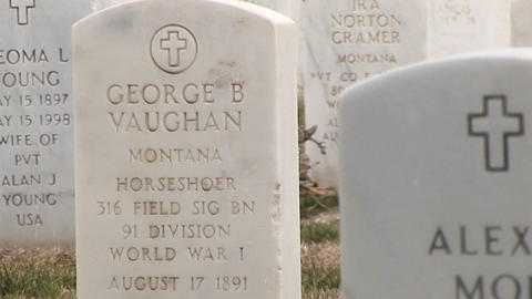 A close-up look at the inscriptions on the marble headstones in Arlington National Cemetery Footage