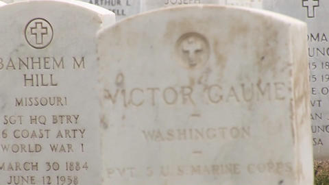 A close-up look at the inscriptions on the marble... Stock Video Footage