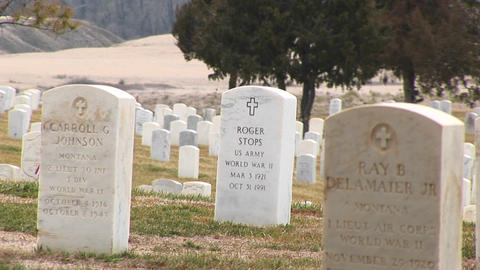 Arlington National Cemetery with white marble headstones of those who served in WW II Footage