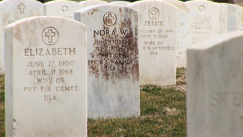 Close-up of headstones of military wives at Arlington National Cemetery Footage