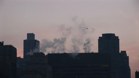 birds fly across the screen as steam rises from downtown buildings during golden-hour Footage