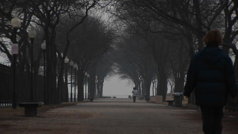 In an urban park with wide pathways, a black dog and two walkers bring life to a stark, wintry scene Footage
