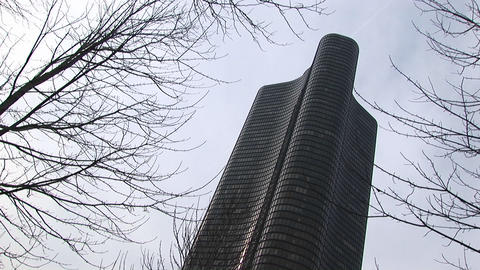 Worms-eye view of distinctive highrise building towering above the bare winter trees Footage