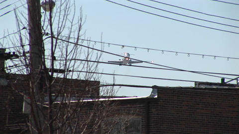 A low-flying airplane passes over power lines and the... Stock Video Footage