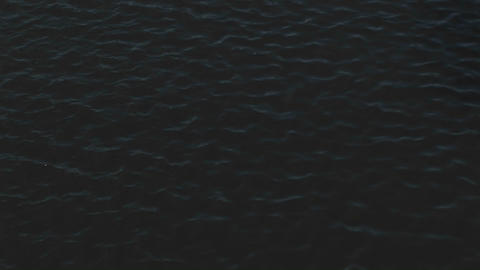 The camera pans from the river water upward to show a... Stock Video Footage