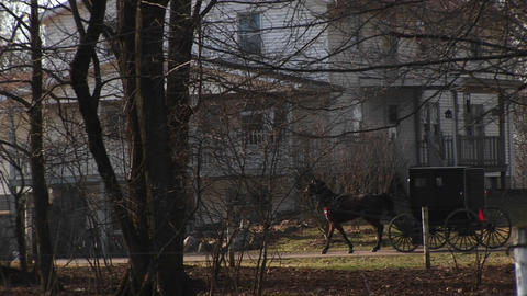An Amish buggy travels by a large rural home Stock Video Footage