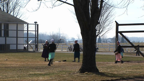 A group of Amish boys and girls are playing baseball outdoors in the fall Footage