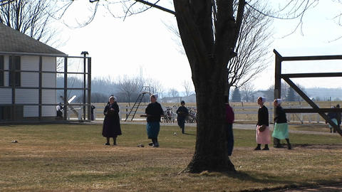 A group of Amish boys and girls are playing baseball... Stock Video Footage