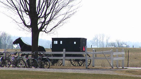 An Amish horse and buggy trot by a rural property with bicycles parked under a tree Footage