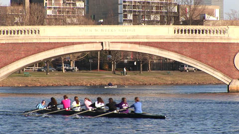 A women's rowing team crosses the Charles River during practice Live Action
