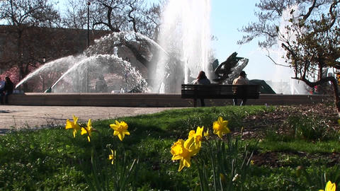 The Four Seasons Fountains provide a relaxing setting for... Stock Video Footage