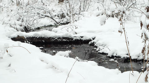 It runs through the snow stream. Russia Footage