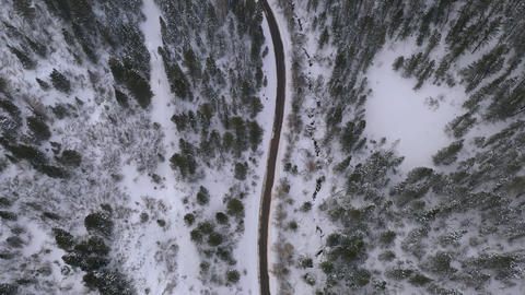 View of road cutting through snowy forest from aerial view Live Action