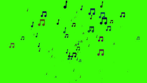 Green screen musical note streaming up in melody with composer. Isolated with alpha is easy to key. Animation