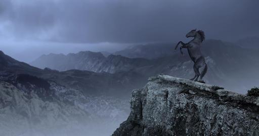 Majestic Black Horse on Cliff Videos animados