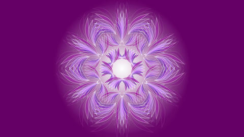Delicate mandala made up of white curves on a sailed, distinctive background Animation