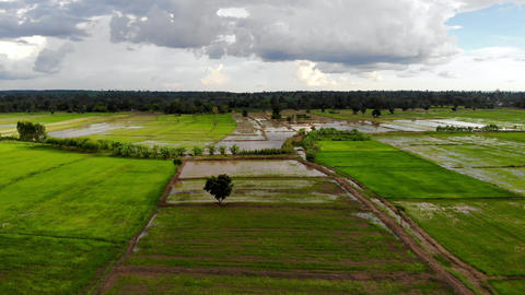 Aerail view scenic landscape of agriculture field Live Action