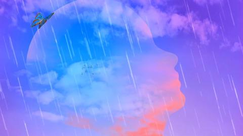 Head silhouette in the sky CG動画