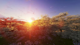 Spring forest, mountain and lake, sunrise, camera tilt Animation