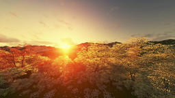 Spring scenery sunset, mountain and lake, camera tilt Animation