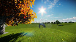 White horse and tree of life, timelapse clouds, tilt Animation