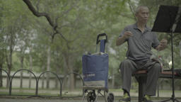 A resident of Beijing, playing a musical instrument in the Park. Beijing. China Footage