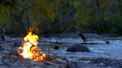 Bonfire Burnig River Floats and Autumn Nature Background Real Time Live Action