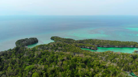 Flying Over Tropical Paradise Pristine Coast Line Rainforest Indonesia Moluccas Archipelago Live Action