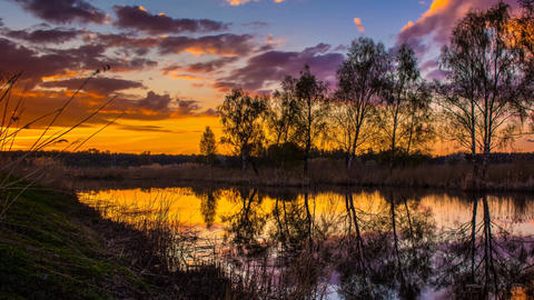 Sunset on the Pond with Leafless Trees Sunset on the Riverbank Sunset on the Late Autumn Rive Live Action