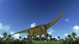 Brachiosaurus cycle walk, loop Animation