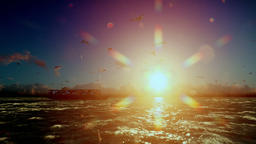 Cargo ship sailing, sunrise timelapse clouds and seagulls, with sound Animation