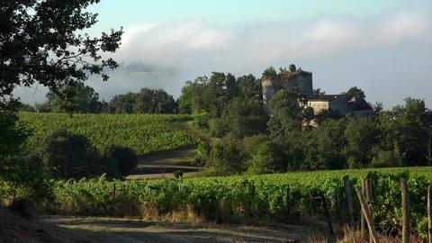 Timelapse, Bordeaux Vineyard at sunrise and fog, Entre deux mers, Langoiran GIF
