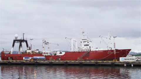 Container Ship at Ushuaia Harbor Acción en vivo