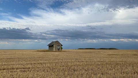 Old barn on the empty field after harvesting in sunny day Acción en vivo