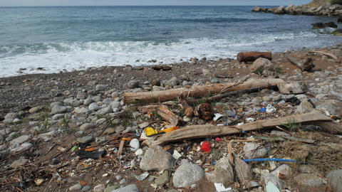 Polluted shore ocean. Global problem of mankind planet garbage, environmental Live Action