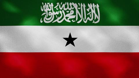 Somaliland dense flag fabric wavers, background loop Animation